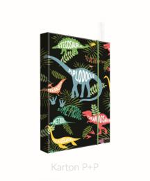 Box na sešity A5 JUMBO Dino druhy